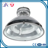 High Precision OEM Custom Pressure Die Casting Aluminum (SYD0023)