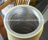 Наружное Ring Type Spiral Wound Gasket с Outer Ring Cg