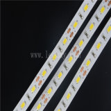 свет прокладки прокладки 5630 5730 гибкий СИД 5M/roll СИД (LM5630-WN60-R-24V)
