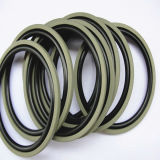 Mechanical SealsのためのPTFE Piston Seals