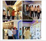 2016 최신 판매 태양 LED 손전등