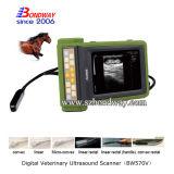 携帯用超音波のスキャンナー牛妊娠検査