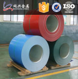 PPGI PPGLColor Coated Galvanized Steel Coil