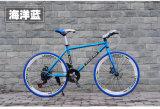 ثابتة ترس درّاجة [موونتين بيك] طريق درّاجة [متب] ([ل--44])