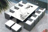 Visualizzazione del controsoffitto dell'ufficio e mobilia del rattan del PE per corrispondere