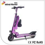 La boudineuse de vent a patiné vélo électrique de panneau