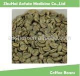 Arabica van Yunnan Koffie