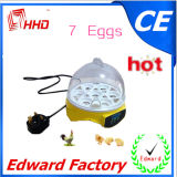 Petit mini incubateur automatique d'oeufs de poulet pour 7 oeufs