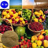 Gli amminoacidi idrolizzati in acido solforici liberano dagli amminoacidi della verdura di Chloridon