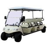 Карета электрического автомобиля гольфа туристская в сценарном пятне
