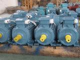 Motor asíncrono trifásico 0.25kw 4p de la serie de Y2 Ie1