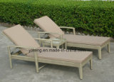 Cheap Outdoor Rattan Wicker Furniture Sun Bed (YT420)