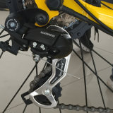 Дешевый тучный электрический велосипед горы (RSEB-505)