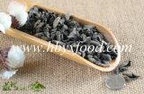 Fungo Fungus nero secco per l'esportazione