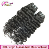 Xblの卸し売りペルーの毛のバージンの人間のHairpieces