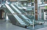 Прогулка безопасности Moving для торгового центра (DE10 DE20)