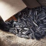 Migliori semi 2015 di girasole di prezzi del Inner Mongolia 5009