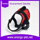 Surtidores de accesorios del animal doméstico del harness de nylon del perro para el entrenamiento