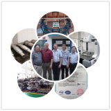 Изготовленный на заказ большой CNC стальной отливки подвергая механической обработке для кольца