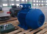 Мотор AC 1.5HP высокой эффективности утюга Ie2 1.1kw 2p