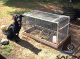 Sailin galvanizó el alambre de pollo para la jaula del conejo