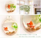 Tanque de peixes acrílico instalado fácil da parede acrílica da bolha dos peixes