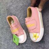 مخزون أحذية لأنّ طفلة صغيرة