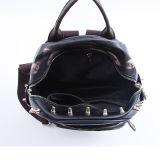 Al8965. Bolsas do desenhador do saco das senhoras de saco do ombro do saco da forma do saco das mulheres da trouxa do saco do plutônio