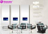 شعبية عالية الجودة صالون الأثاث شامبو الحلاق صالون كرسي (P2007)
