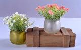 홈 또는 사무실 또는 호텔 훈장을%s 유리제 화병에 있는 인공적인 각종 봄 꽃