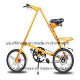 Faltendes Bicycle für Adult mit Factory Price (NY-FB001)