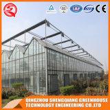 Casa verde de vidro do jardim do baixo custo da agricultura