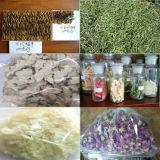 De farmaceutische Drogende Machine van de Vorst voor Verkoop