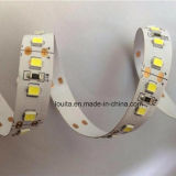 CRI 80 DC 12V SMD2835 LED Strip