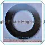 Permanenter Neodym-Ring-Magnet 018