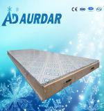 Venta fría del congelador de la placa de la alta calidad con precio barato