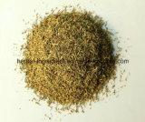98% de memória Thymol que melhora o extracto de tomilho, extracto de folha de tomilho em pó