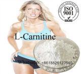 백색 정밀한 분말을%s 가진 CAS No. 541-15-1 스포츠 영양 L Carnitine 플랜트 추출