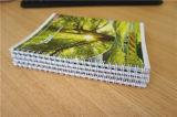 Carnet de notes à spirale de la coutume A4 A5 de fourniture de bureau d'approvisionnement d'école