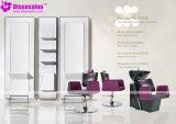 شعبيّة [هيغقوليتي] صالون مرآة [بربر شير] صالون كرسي تثبيت ([ب2028ف])