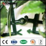 SGSはホーム庭の装飾のための緑のかえでの許可の両掛けを証明した