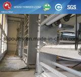 Cages de poulet de matériel de volaille pour la Tanzanie