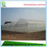 Marco de acero galvanizado caliente de la casa verde para las ventas