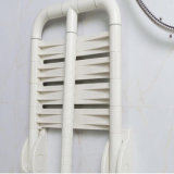 Anti presidenza di sauna andicappata stanza da bagno di nylon delle feci dell'acquazzone di pattino