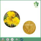 Чисто естественный обрабатывать головной боли выдержки Morifolium хризантемы флавона 10%