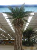 Напольная искусственная пальма даты с ценой по прейскуранту завода-изготовителя