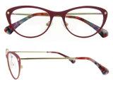 Ultimi blocchi per grafici di vetro dell'occhio di gatto degli occhiali delle donne di modo della Cina