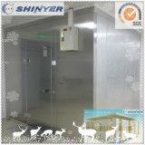 Caminata modular de Shinyer en el congelador para el almacenaje del alimento