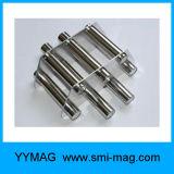 Magneten de van uitstekende kwaliteit van de Vultrechter
