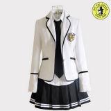 Uniforme da escola fabrica OEM Service Primary High School Uniforms